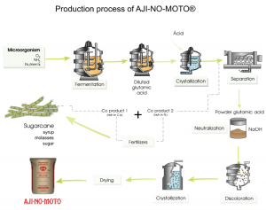 MSG manufacturing process