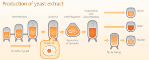 yeast extract production flow