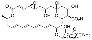 natamycin chemical structure