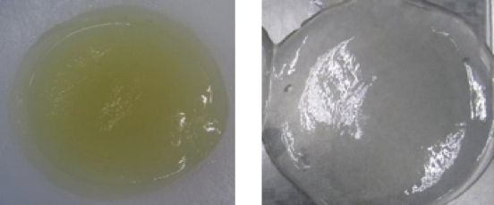 semi refined and refined Iota carrageenan gel