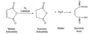 succinic acid chemical manufacturing process
