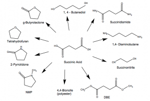 succinic acid derivatives