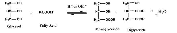 Direct esterification process of Mono and Diglycerides