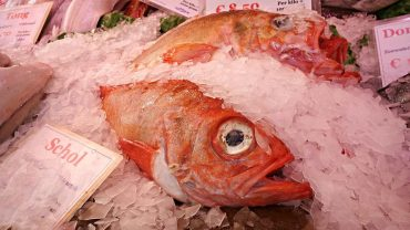 Sodium Phosphates in seafood