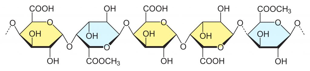 low methoxyl (LM) pectin chemical structure