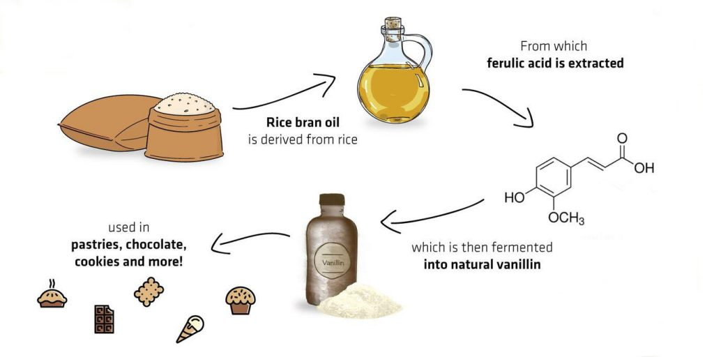 vanillin made from ferulic acid